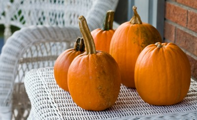 Pumpkins (Photo: Brian Leon/Flickr)