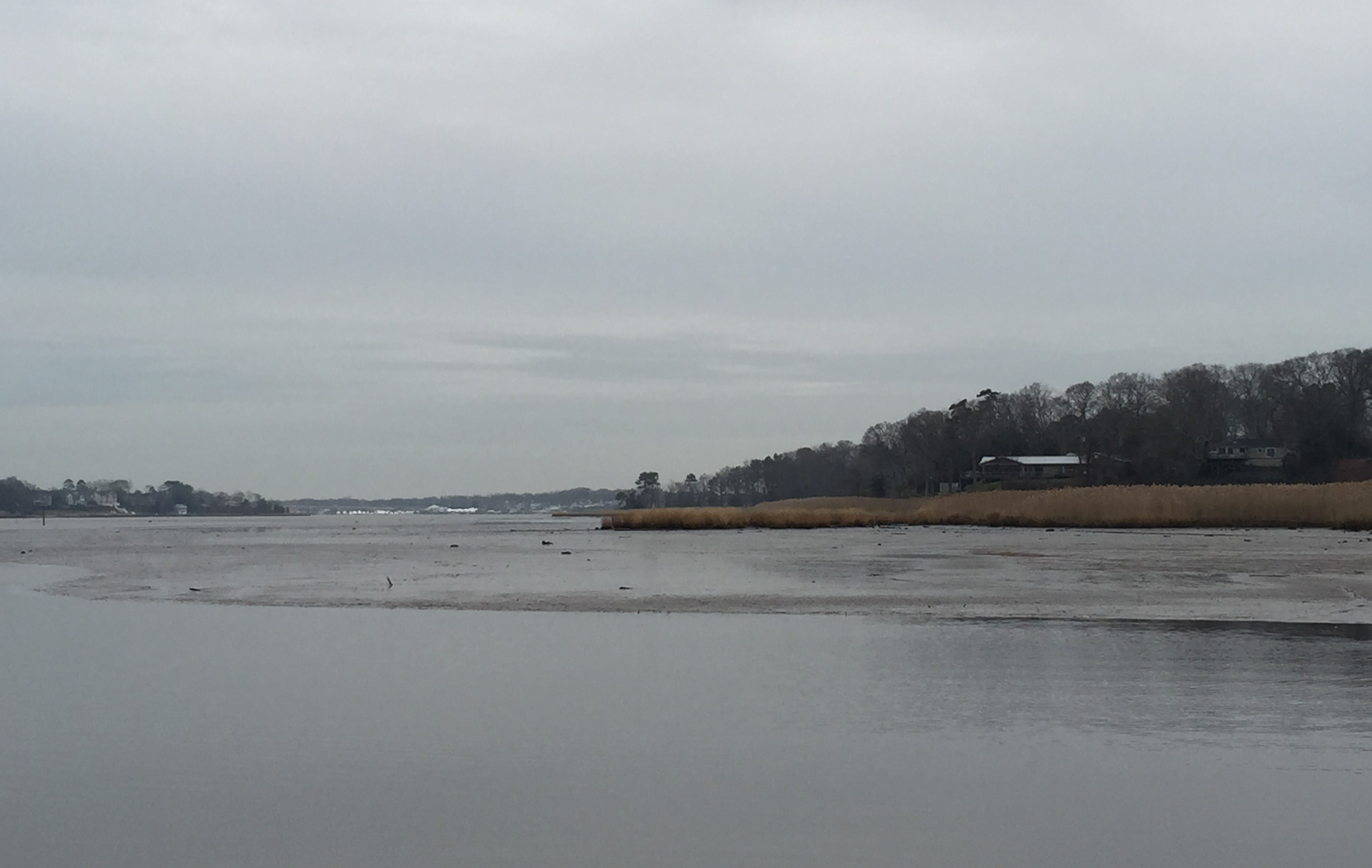 The Manasquan River, Dec. 22, 2014. (Photo: Daniel Nee)