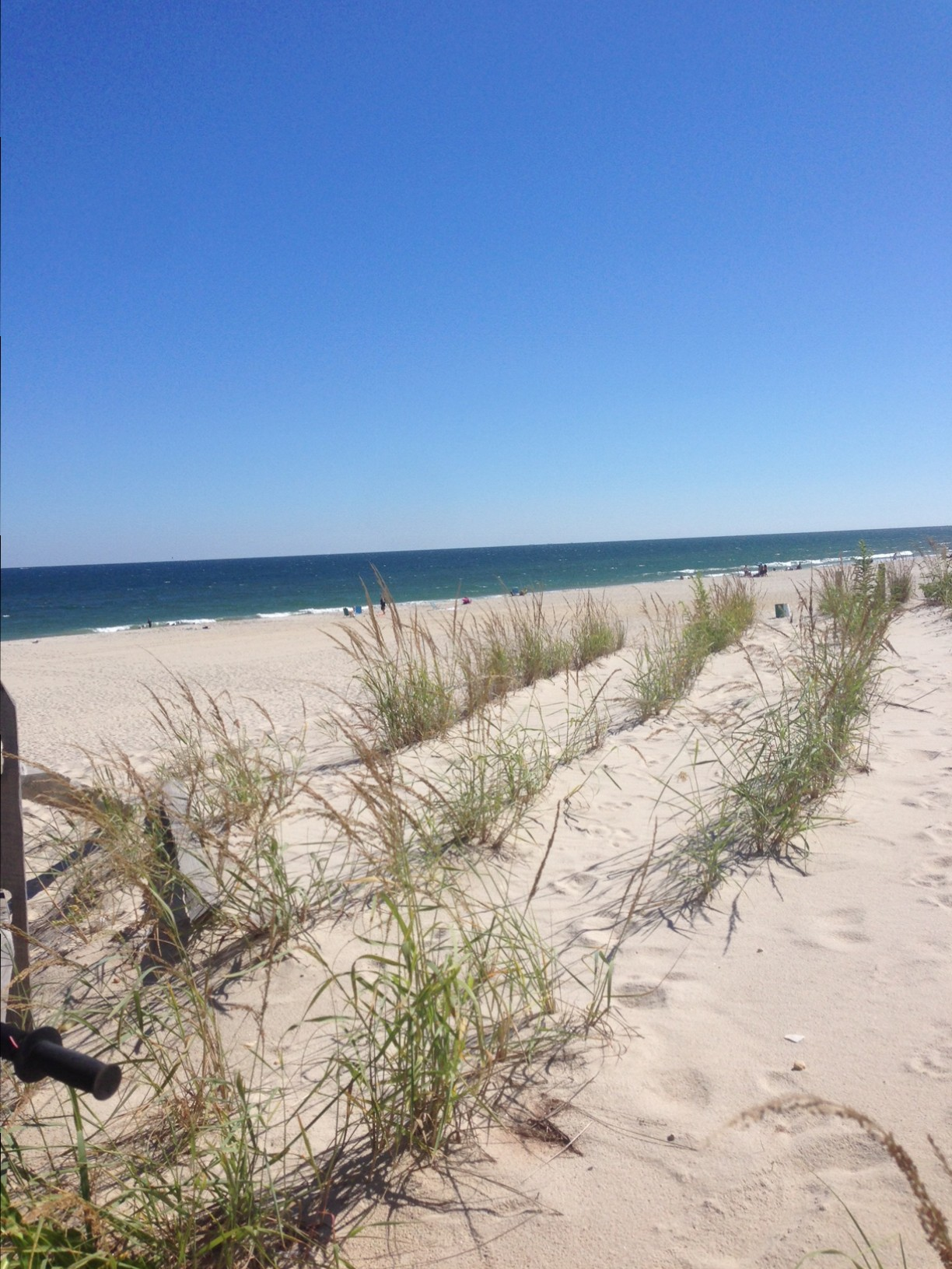 Dunes built by the U.S. Army Corps of Engineers in Long Beach Island. (Photo: Daniel Nee)