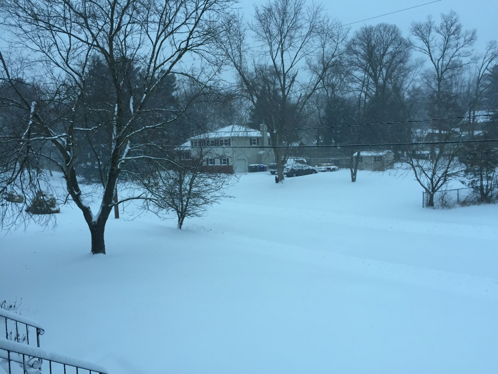 A few inches of snow piled up in Brick's Herbertsville section Tuesday morning. (Photo: Daniel Nee)