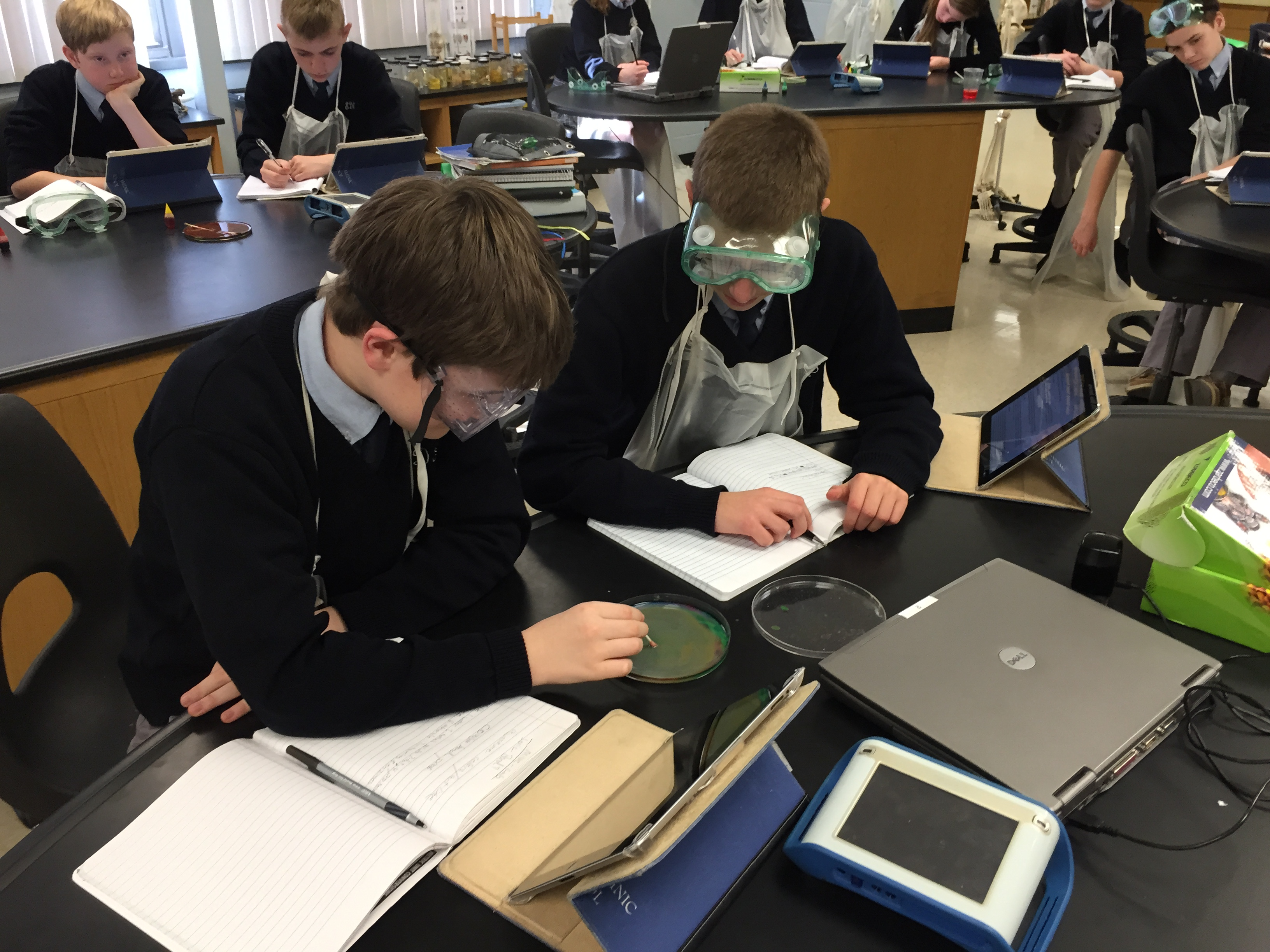 Students in Joanne Arnold's science class at. St. Dominic School in Brick work on a project on chemical bonding. (Photo: Daniel Nee)