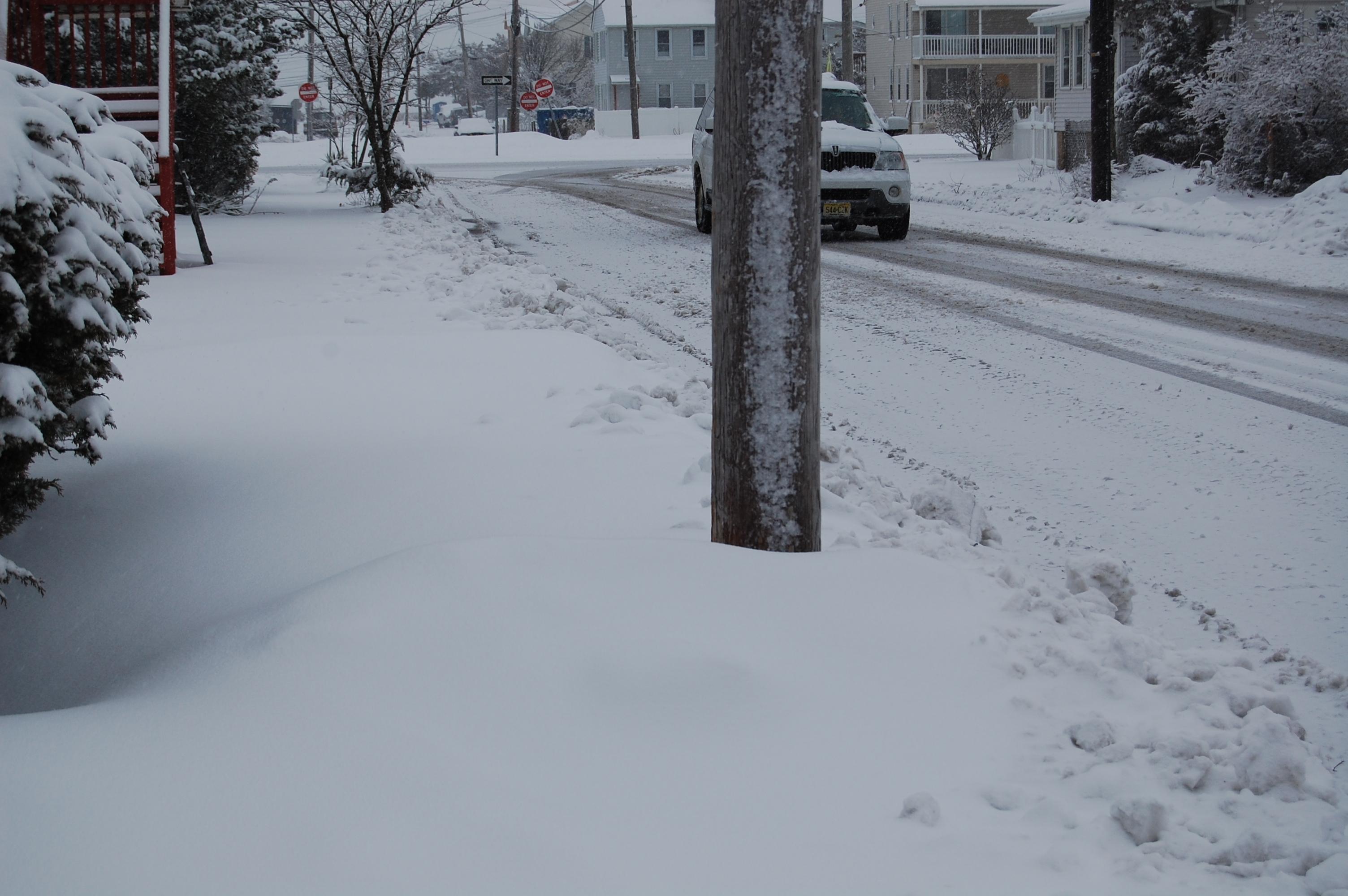 Snow, March 5, 2015. (Photo: Daniel Nee)