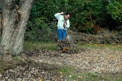 Raking leaves. (File Photo/Flickr/Sue Talbert Photography)