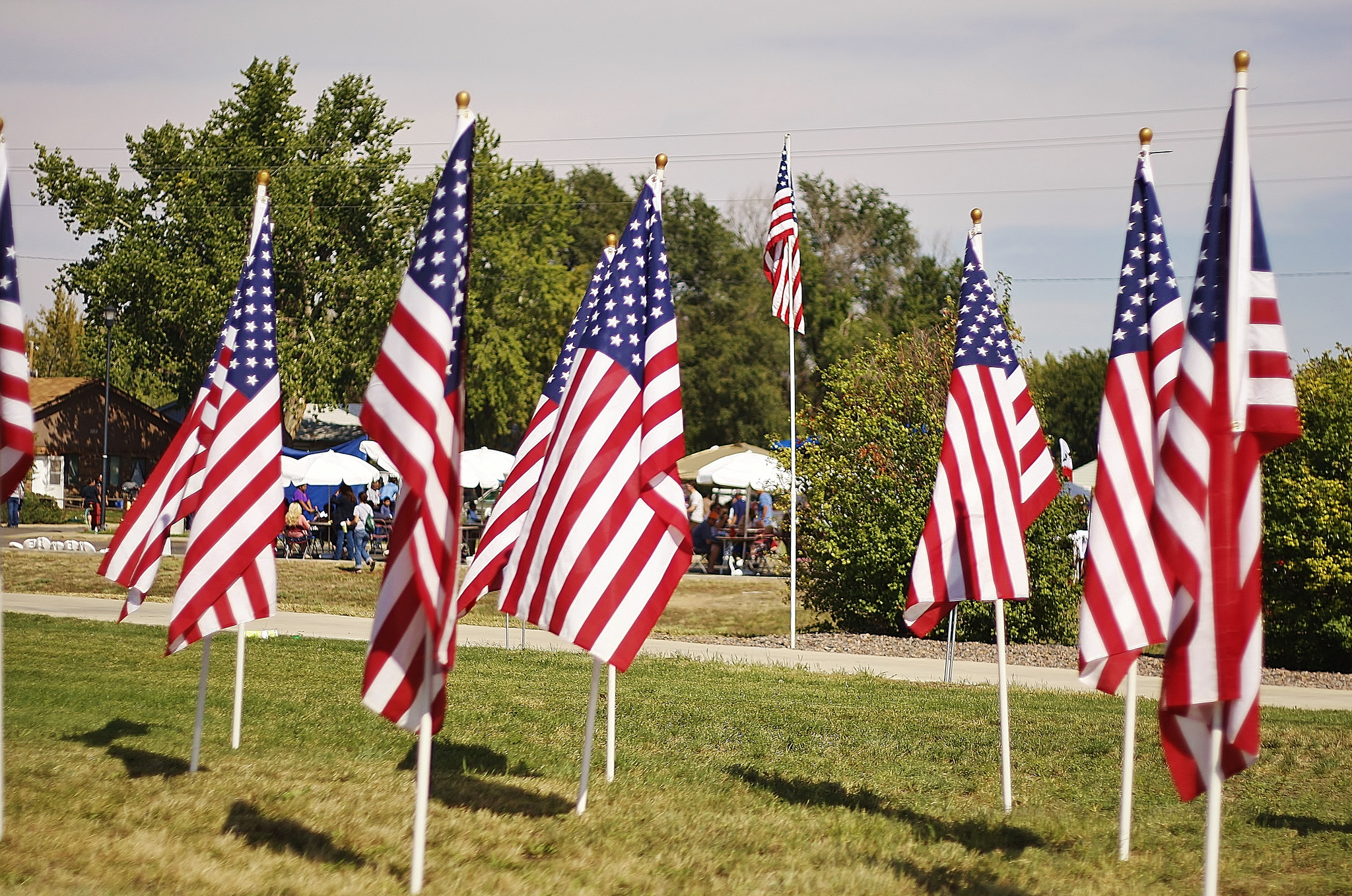 American Flags (Credit: William Andrus/Flickr/File Photo)