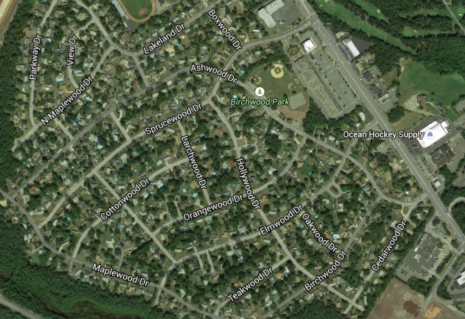 Birchwood Park (Credit: Google Maps)