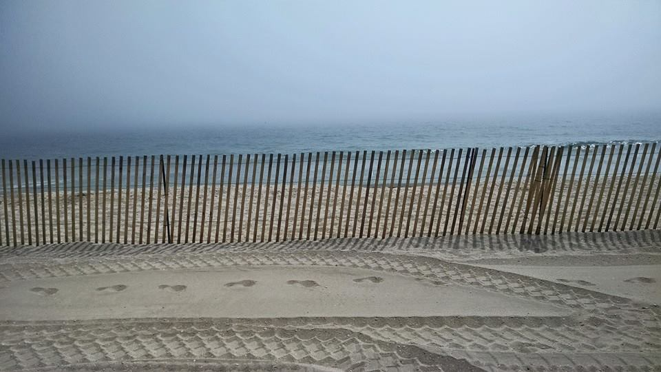 A fence installed along the beachfront in Normandy Beach. (Photo: Dan Redmond)