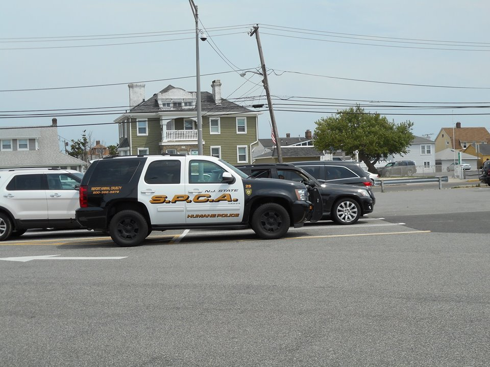 SPCA police on a volunteer patrol in Ocean County. (Photo: NJSPCA)