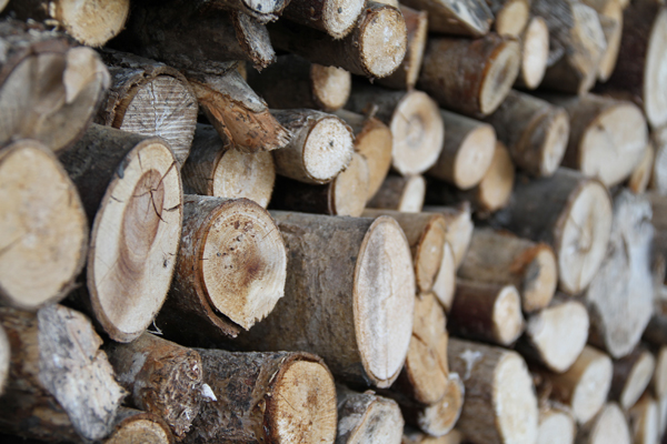 Firewood (Credit: Christine Kongsvik/Flickr)