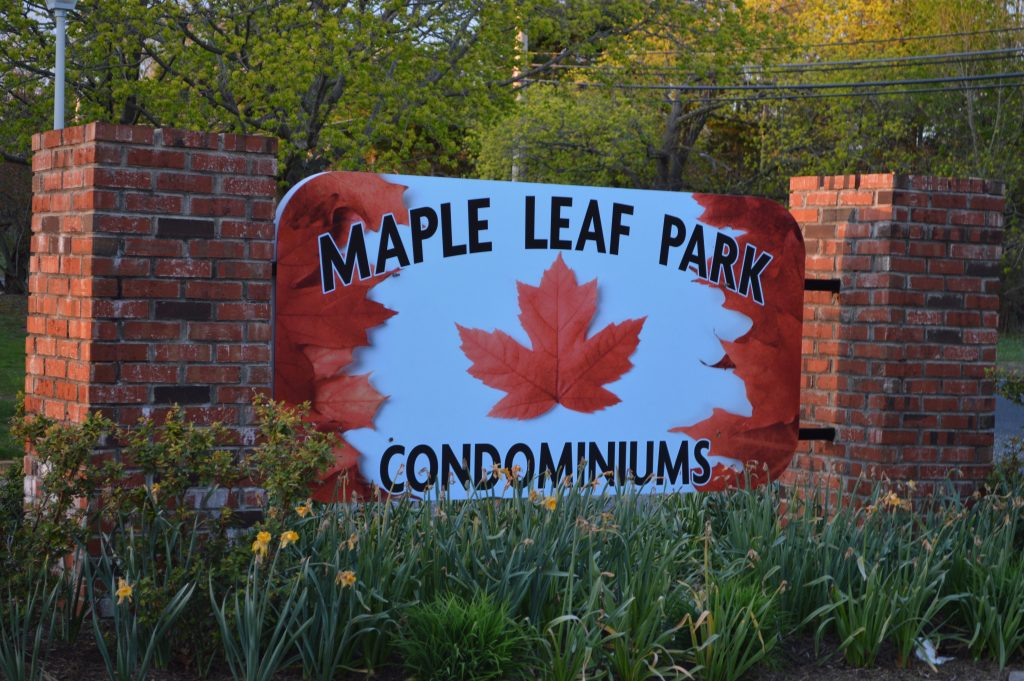 Maple Leaf Park (Photo: Daniel Nee)