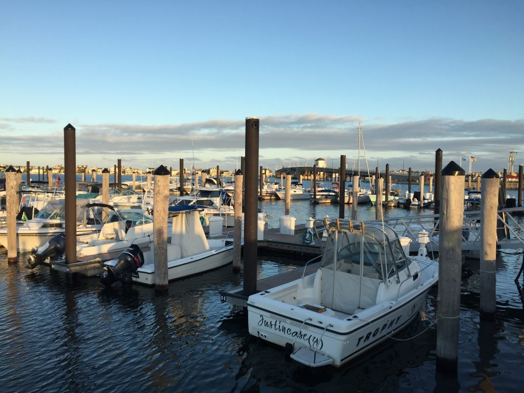 Boats docked at Traders Cove Marina, Brick, N.J. (Photo: Daniel Nee)