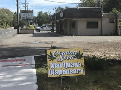 A prank sign advertising a medical marijuana dispensary on Herbertsville Road. (Photo: Daniel Nee)