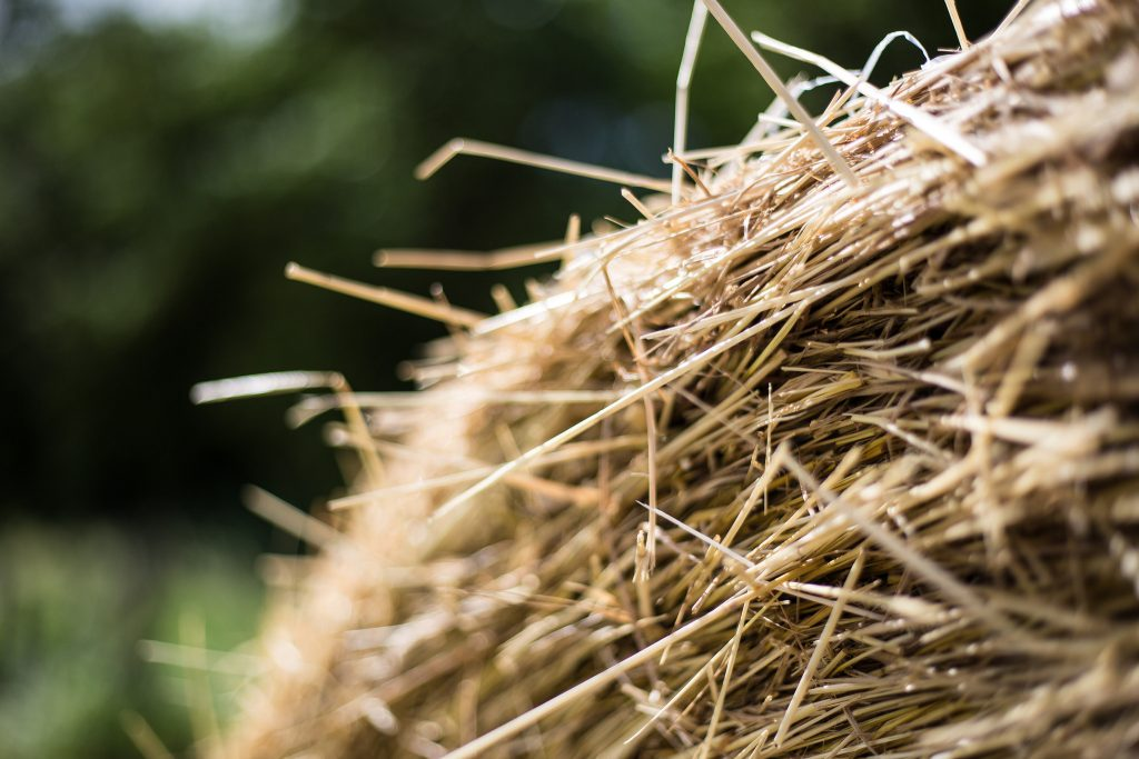 Bale of hay. (Photo:  Phil Roeder/Flickr)