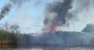 A fire at Green Cove Marina in Brick, Aug. 1, 2019. (Photo: Daniel Nee)