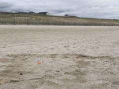 High tide water marks head toward the toe of a dune in Ortley Beach. (Photo: Daniel Nee)