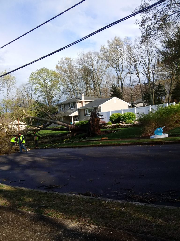Damage to Point View Road from the April 21, 2020 storm. (Photo: Jack O'Callaghan)