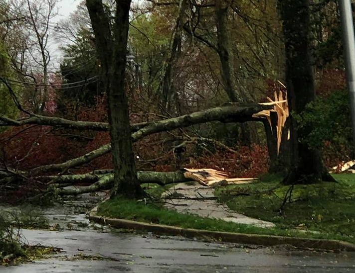 Damage from a severe storm, April 21, 2020, in Herbertsville. (Credit: Steven Houghtaling/Facebook)