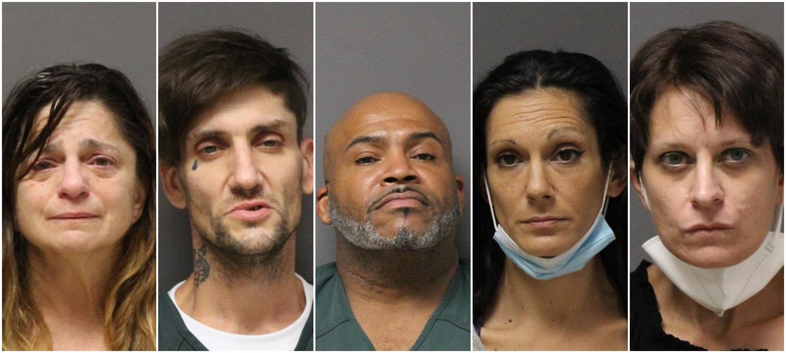Mug shots of Michelle Lanzieri, Ryan Chapman, John Brown Jr., Jill Farrelly and Tracy Martin. (Photos: Ocean County Jail)