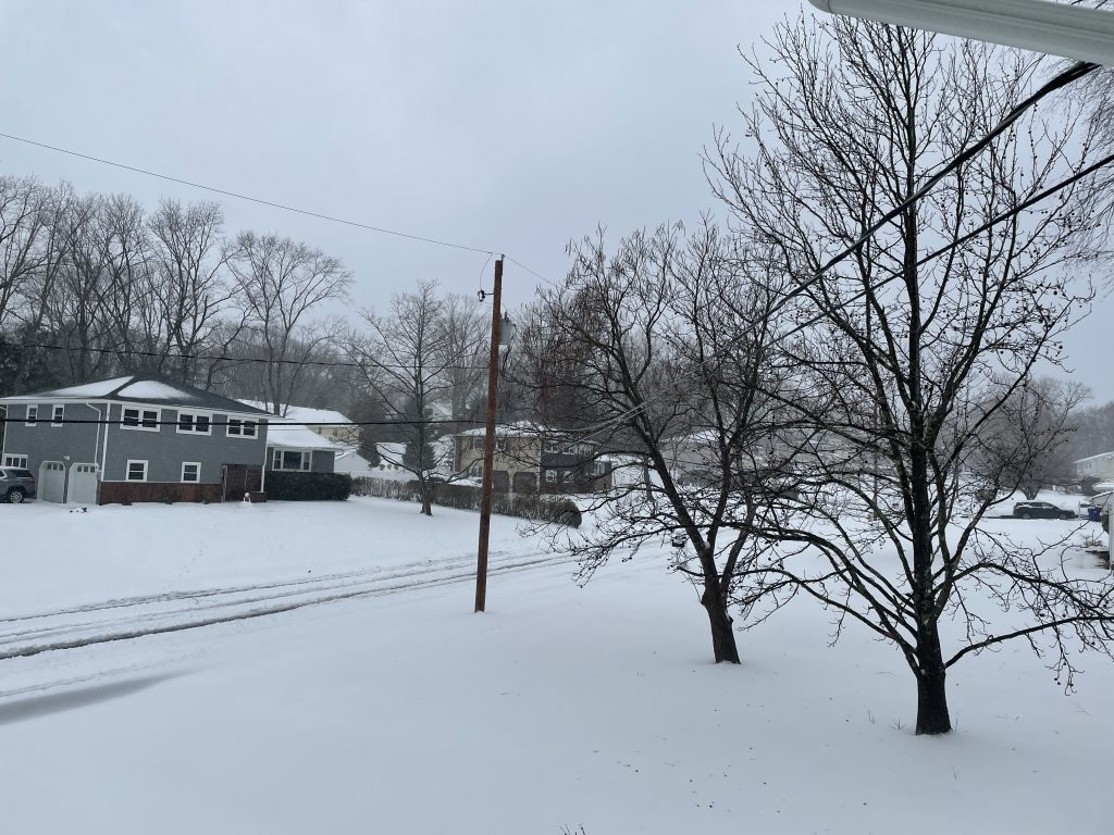 Snowfall in Brick Township N.J.'s Herbertsville section, Feb. 1, 2021. (Photo: Daniel Nee)